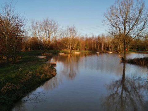 "Wiggs Farm – ""Back Pond"""