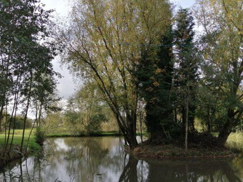 """Wiggs Farm – """"F1 Pond"""""""