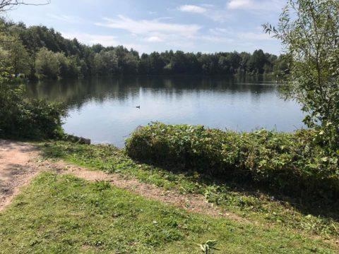 Hermitage Park Lake