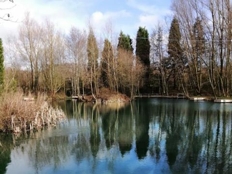 "Wiggs Farm – ""Top Pond"""