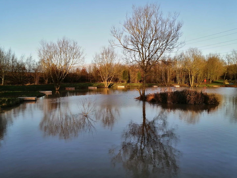 Back Pond 6