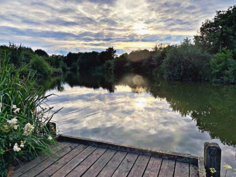 Bagworth Heath – Main Pond