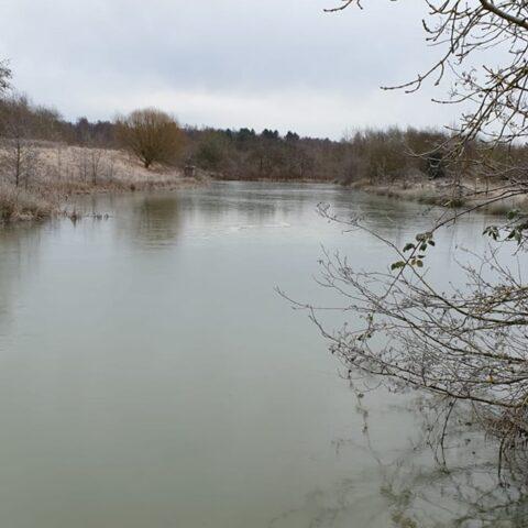 Bagworth Heath – Sandmartin Pool